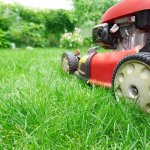 Mow your lawn this Saturday and get a free video game about mowing your lawn