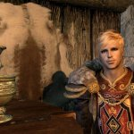 'Skyrim' player's dating life is literally all of us